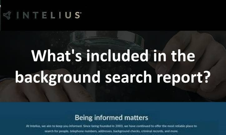 What's included in the background search report?